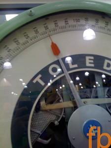 135 Toledo Scale