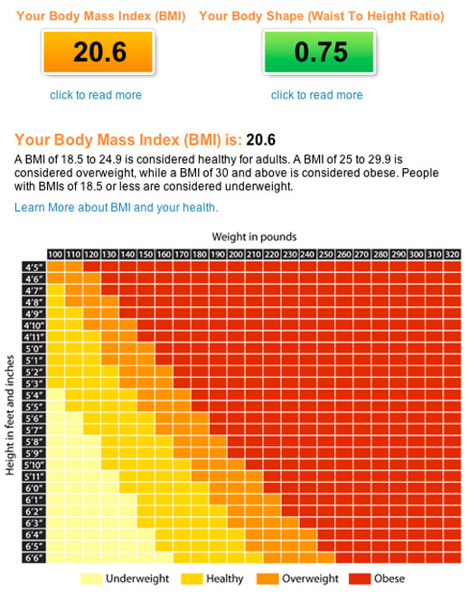 Fatboy BMI Challenge Chart